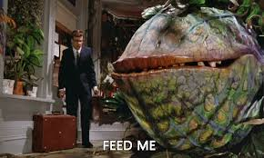 Feedme.jpeg
